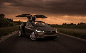Picture the evening, Tesla, Model X