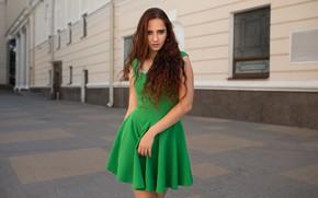 Picture Girl, dress, Evelyn, Dmitry Shulgin
