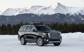 Picture tops, GMC, SUV, Denali, Yukon, 2020