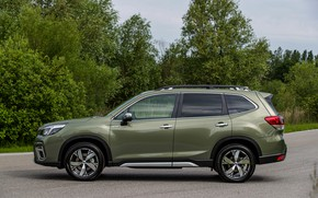 Picture trees, Subaru, side, crossover, Forester, 2019