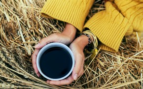 Picture autumn, coffee, hands, hay, Cup, sweater