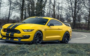 Picture Mustang, Ford, Ford Mustang, Shelby GT350