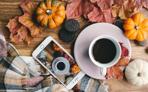 Picture autumn, comfort, photo, Board, coffee, scarf, cookies, mug, Cup, pumpkin, fabric, pumpkin, phone, drink, saucer, …