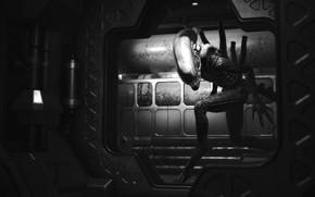 Picture Stranger, Alien, Spaceship, Sevastopol, Alien Isolation, Sevastopol Station, Ксеноморф XX121, Охотиться, Ищет