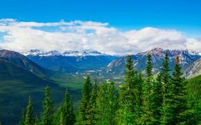 Picture forest, the sky, clouds, mountains, valley