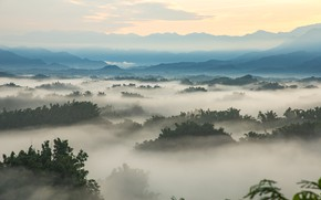 Picture Nature, Mountains, Fog, Forest, Landscape