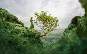 Picture girl, tree, mountain