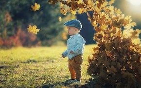 Picture autumn, leaves, boy