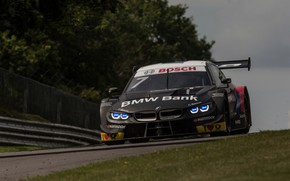 Picture grass, trees, lawn, coupe, track, BMW, the fence, M4 DTM