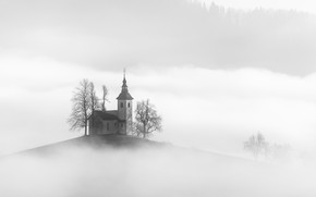 Picture nature, fog, house