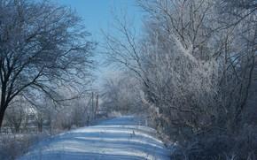 Picture winter, snow, dam, Meduzanol ©