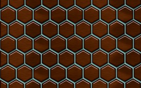 Picture cell, pattern, geometry, pattern, honeycomb, cell, geometry, cells