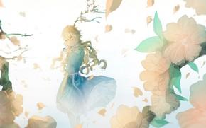 Picture flowers, petals, Sakura, girl