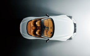 Picture Lexus, convertible, the view from the top, 2021, LC 500 Convertible
