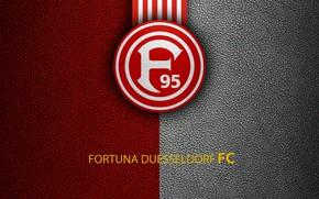 Picture wallpaper, sport, logo, football, Bundesliga, Fortuna Duesseldorf