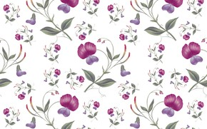 Picture white, flowers, background, Wallpaper, Pattern, Floral, Seamless
