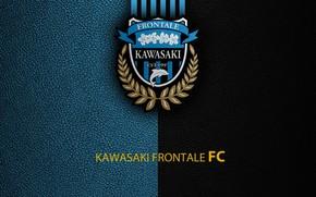 Picture wallpaper, sport, logo, football, Kawasaki Frontale