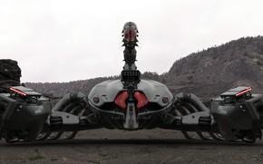 Picture robot, Scorpio, scorpion, Amin Akhshi, Deathstalker
