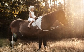 Picture light, horse, girl