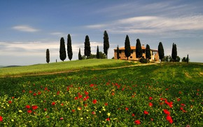 Picture grass, trees, house, hills, Maki, meadow, Italy, Tuscany