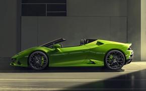 Picture Lamborghini, side view, Spyder, Evo, Huracan, 2019, Lamborghini Huracan Evo