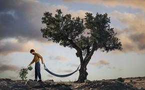 Picture tree, people, hammock