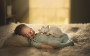 Picture cat, house, child