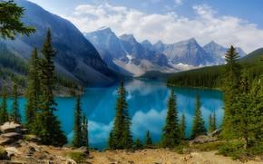 Picture forest, lake, shore, ate, Canada, Albert, pond, Moraine