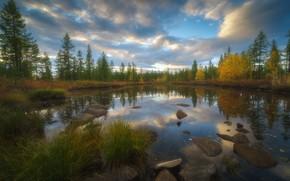 Picture autumn, forest, grass, clouds, trees, nature, lake, stones, Ural, The Arctic, Rev Alex, Alex Revs
