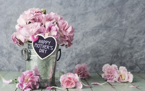 Wallpaper flowers, petals, bucket, pink, happy, vintage, wood, pink, flowers, beautiful, romantic, mother's day