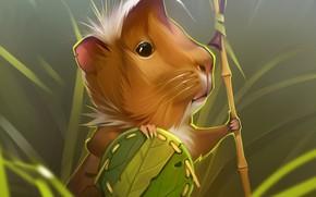 Picture warrior, Guinea pig, by GaudiBuendia