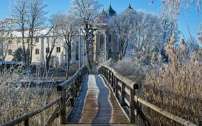Picture winter, the sun, trees, bridge, house