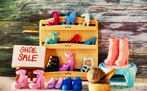 Picture macro, the inscription, plate, toys, Board, snail, shoes, shop, toy, showcase, shopping, sale, boutique, purchase, ...