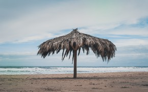 Picture sand, sea, wave, beach, summer, the sky, palm trees, shore, umbrella, summer, beach, sea, seascape, …