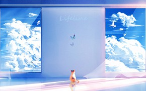 Picture the sky, clouds, birds, kitty, butterfly, Lifeline