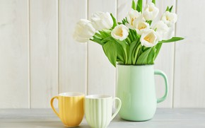 Picture tulips, vase, white