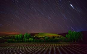 Picture stars, night, hills, field