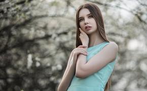 Picture girl, nature, spring, dress, brown hair, Vladimir Vasiliev