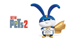 Picture the inscription, cartoon, hare, costume, white background, poster, character, Snowball, The secret life of Pets …
