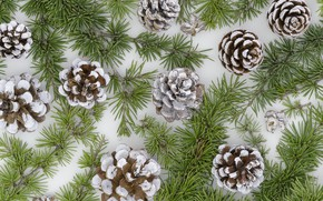 Picture decoration, New Year, Christmas, Christmas, bumps, New Year, decoration, Merry, fir tree, fir-tree branches