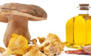 Picture mushrooms, oil, garlic