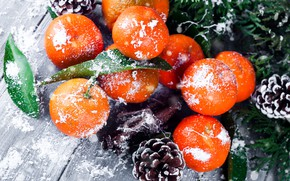 Picture snow, decoration, New Year, Christmas, Christmas, wood, winter, snow, fruit, New Year, tangerines, decoration, tangerine, ...