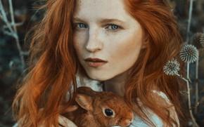 Picture look, girl, face, hair, portrait, rabbit, freckles, red, redhead, Marketa Novak, Marie Hlávková