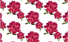 Picture white, background, roses, texture, buds, Roses, background, pattern
