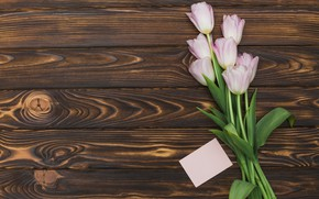 Picture bouguet, tulips, tulip, pink, wood, pink