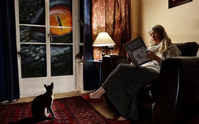 Picture room, window, eyes, dinosaur, giant, woman, cat