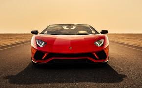Picture Roadster, Lamborghini, supercar, front view, Aventador, Aventador S, 2019