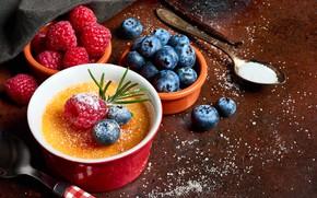 Picture raspberry, blueberries, dessert, Creme brulee, Anya Ivanova