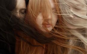 Picture girls, the wind, hair, Eva Milkonskaya, The Wind