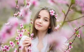 Picture look, spring, girl, flowering